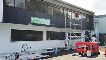 Auckland property services- maintenance